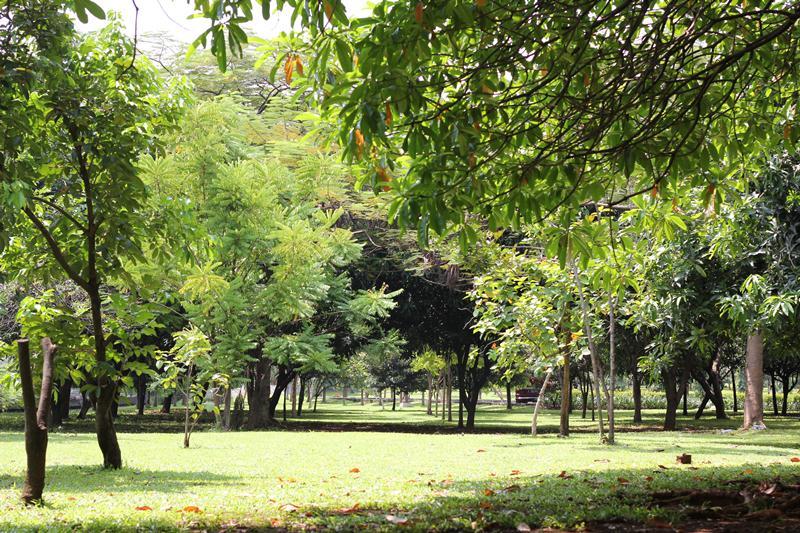 5 Taman Kota di Jakarta yang Jadi Alternatif Wisata Gratis Saat Weekend