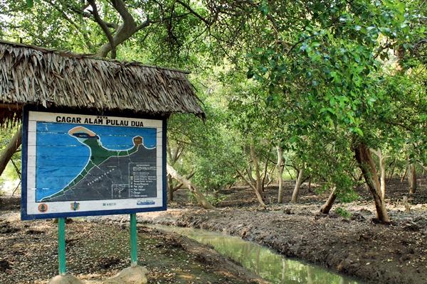 Cagar Alam Pulau Dua