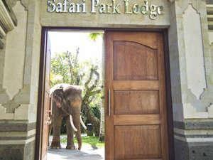 Elephant Safari Park Bali - Entrance