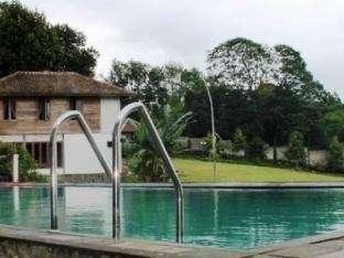 Villa Bunga Bunga Bogor - Swimming Pool