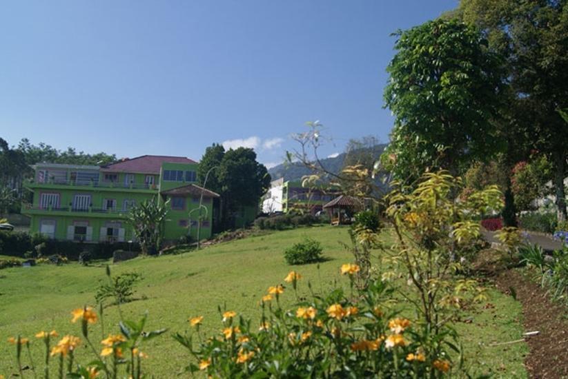 Villa Bunga Bunga Bogor - Garden