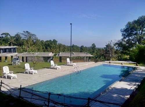 Tea Garden Resort Subang - Pool