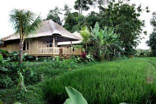 Puri Taman Sari Bali - Bamboo room