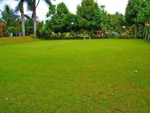 Aquarius Orange Resort Bogor - Field