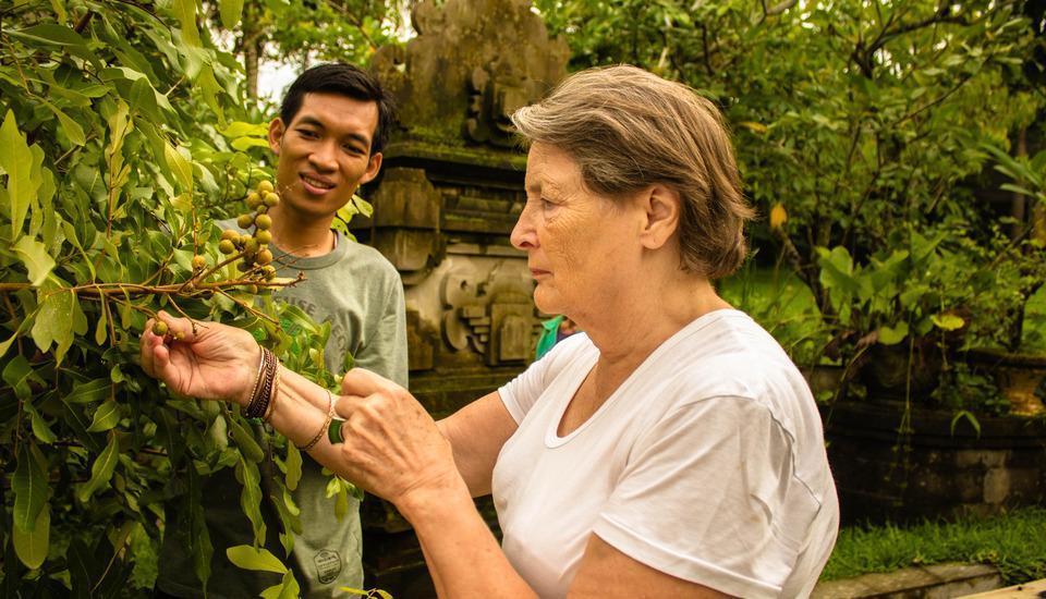 Bhuwana Ubud Hotel Bali - Fruit Harvesting