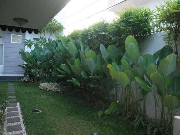 The Sriwijaya Hotel Padang - Around Hotel