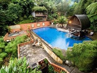 Sangria Resort & Spa Bandung - Swimming Pool View