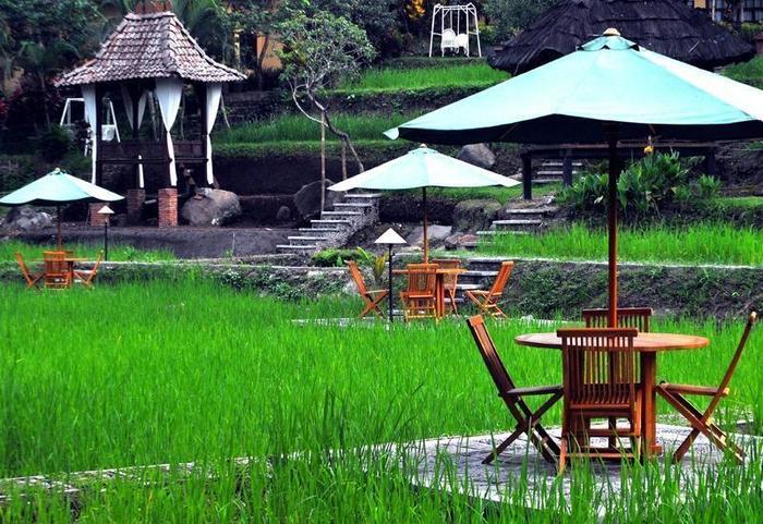 Paddy City Resort Malang - Garden View