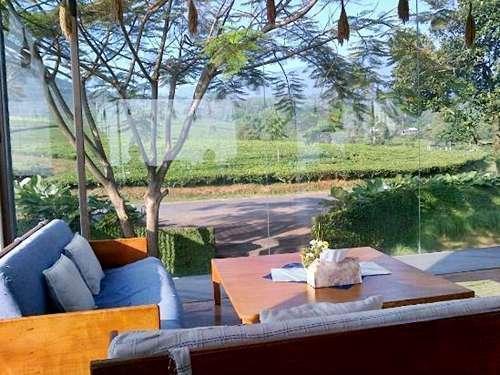 Tea Garden Resort Subang -