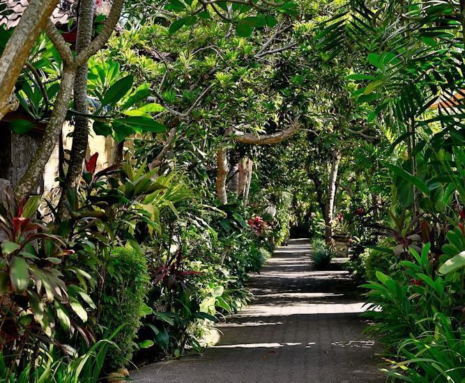 Taman Harum Cottages Bali - GARDEN