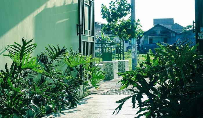 Bali Contour Bali -