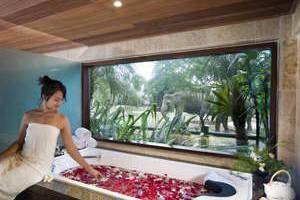 Elephant Safari Park Bali - Jacuzzi