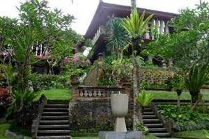 Artini 3 Cottages Bali - Garden