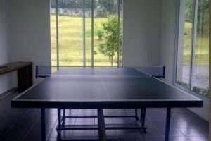 Villa Bunga Bunga Bogor - Tennis Table