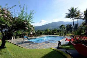 The Jayakarta Cisarua Bogor - Water Pool