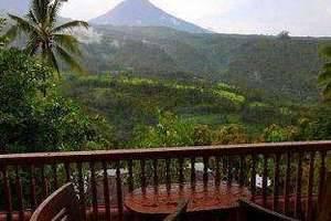 Puri Sunny Hotel Bali - Terrace View