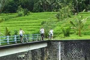 Puri Taman Sari Bali - Trekking & Cycling