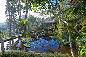 Tjampuhan Hotel Ubud - Around