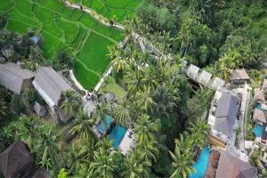 Wapa di Ume Bali - Aeriel View