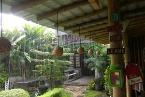 Venezia Garden Yogyakarta - Front garden area