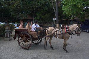 Melka Excelsior Hotel Bali - Hackney Cab