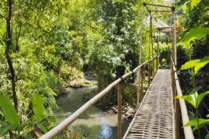 Plataran Bali Resort and Spa Bali - View