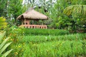 Jambuluwuk Ciawi Bogor - Hotel exterior