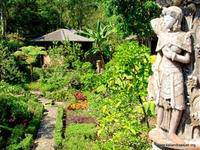 Kaliandra Sejati Eco Resort