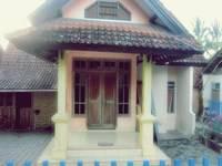 gambar Kampung Osing Inn