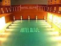 gambar Hotel Olive