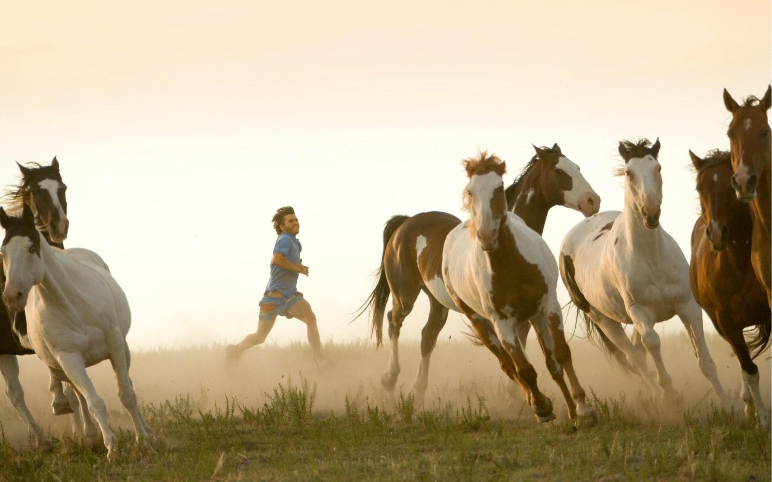into-the-wild-emile-hirsch-actor-horse-herd2-1600x2560
