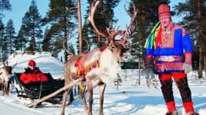 reindeer-lapland-safaris-rovaniemi
