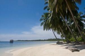 siberut-island