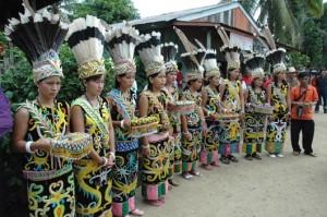 Foto 2 Hutan Pedalaman Kalimantan 1