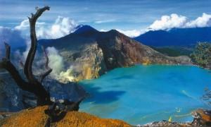 Foto 3 Taman Nasional Baluran & Gunung Ijen