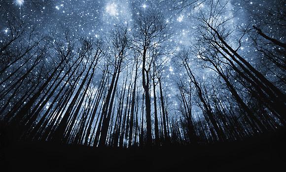 Foto 4 Pemandangan Malam Indah