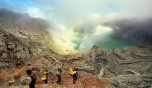 Foto 4 Taman Nasional Baluran & Gunung Ijen