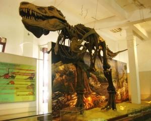 Museum Geologi, Bandung