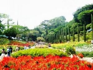 Taman Wisata Rekreasi Selecta2 di kota Batu Malang yoshiewafa.blogspot.com