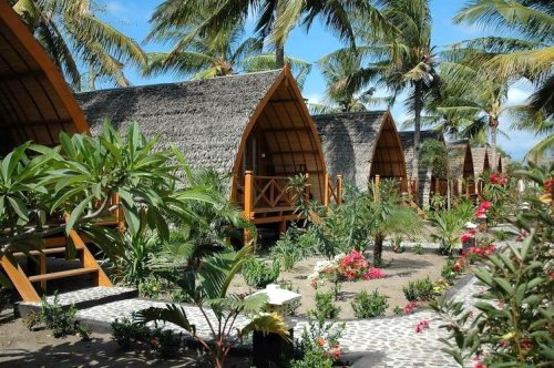 Petualangan seru di 3 gili - Lombok dive resort ...