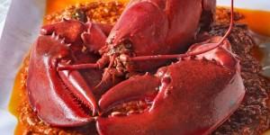 Bisa menghabiskan lobster ini, travelers?