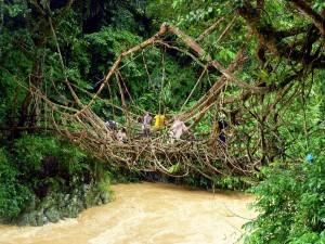 jembatan kampung baduy