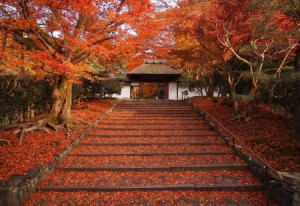 Foto 5 Kuil Cantik di Jepang