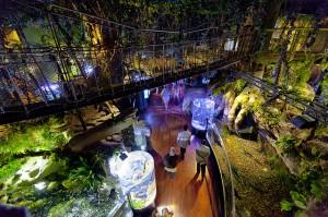 dubai-mall-underwater-zoo