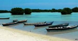 pulau pari_arben