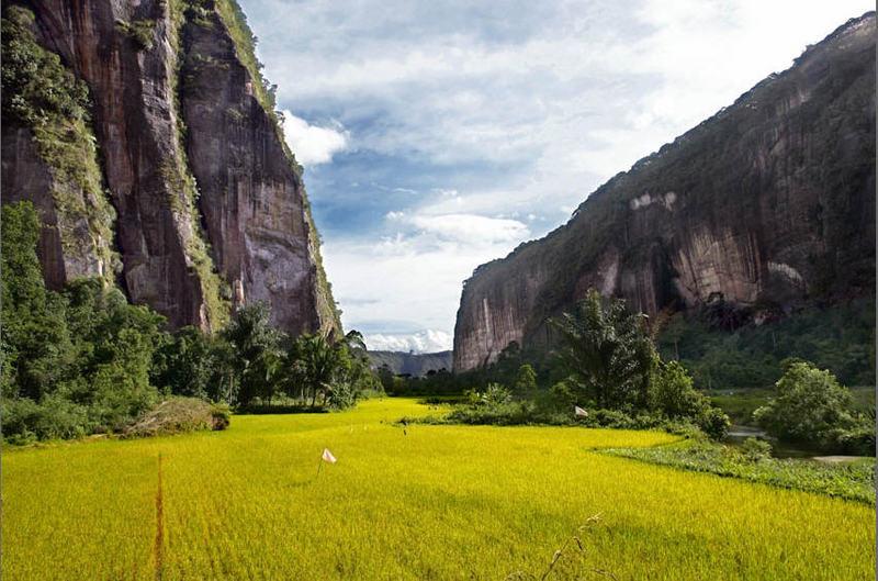 Wisata Ke Lembah Arau