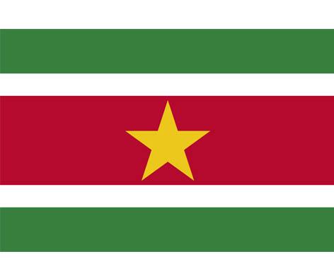 Bendera Resmi Suriname