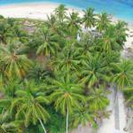 Berwisata & belajar mencintai lingkungan? Ke Pulau Kasiak yuk!