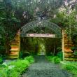 Taman Nasional Alas Purwo