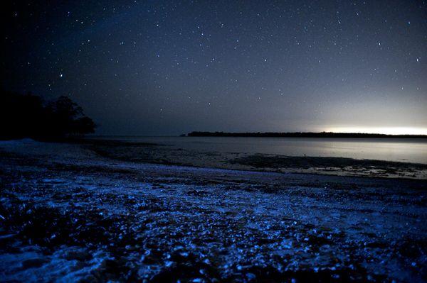 Foto 5 Pantai-pantai Indah di Maldive